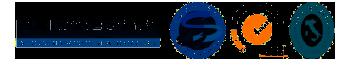 logo_visentin